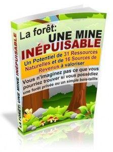 Produits verts: Bruno Minier lance «la forêt, une mine inépuisable», pour vous apprendre toutes les ressources naturelles
