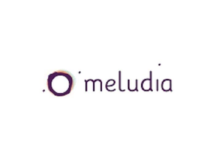 E-Business: Meludia lève 500 000 euros pour révolutionner l'apprentissage de la musique