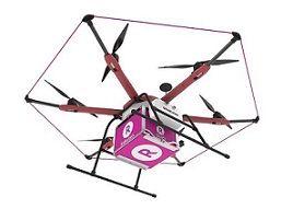 E-Commerce: Rakuten, l'entreprise qui livre ses repas avec des drones