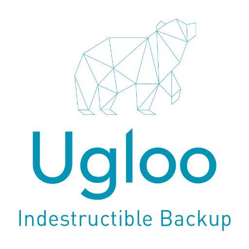 Spécialiste de la sauvegarde de données, la start-up Ugloo lève 1,25 million d'euros