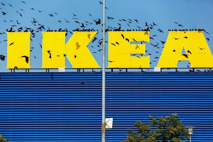La start-up Taskrabbit a été absorbée par le géant Ikea