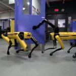 [Vidéo]: Quand les robots de Boston Dynamics cultivent l'amitié et l'entraide