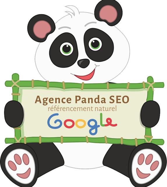 Pandaseo, Une start-up Lyonnaise du référencement qui cartonne!