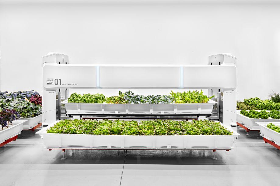 La start-up Iron X vous présente sa ferme du future autonome et robotisée