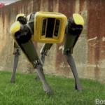 [Vidéo]: Quand Spot Mini s'offre un moment de détente en dansant...