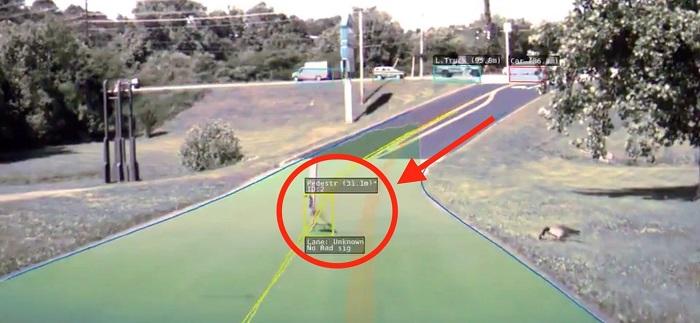 [Vidéo]:Regardez comment l'autopilote de Tesla voit une oie traversant la route