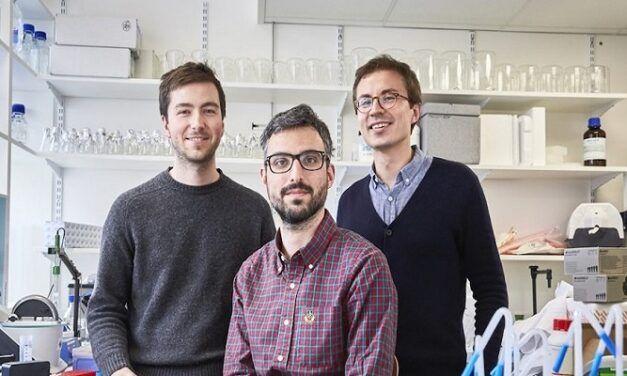 La start-up Dna Script annonce une nouvelle levée de fonds pour continuer sa lutte anti-cancer et maladies génétiques