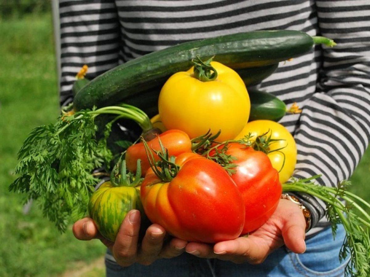Panier de fruits et légumes en livraison à domicile : quand le