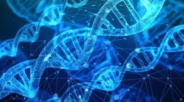 La start-up Suisse Sophia Genetics effectue une levé de fonds de 94M€ pour améliorer sa plateforme d'analyse génomique