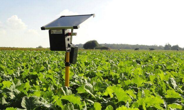 Agritech: Copeeks permet aux agriculteurs de monitorer leurs productions végétales et animales