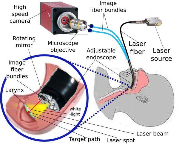 dispositif micro-endoscopique