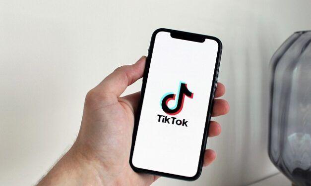 Infographie: Où TikTok est-il le plus populaire ?
